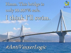 bridge analogy