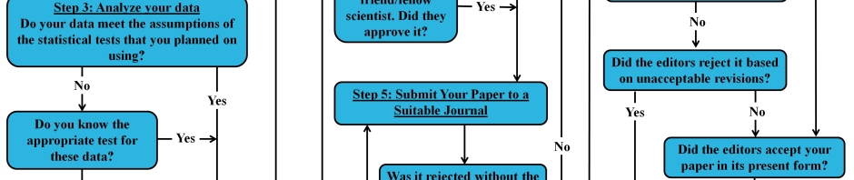 flowchart diagram how to publish scientific peer-reviewed paper blog