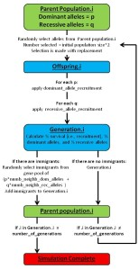 This sows the basic workflow that the simulation uses.