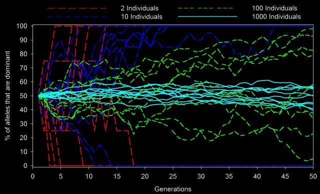 genetic drift illustration simulation population size
