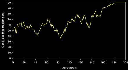 genetic drift random walk