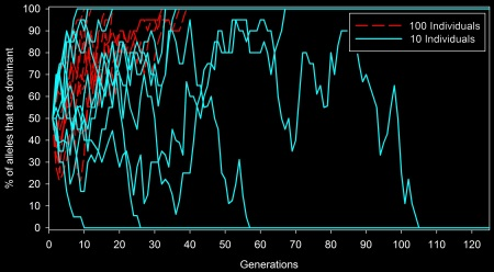 Each red dashed line shows a population with 100 individuals, and each solid light blue line shows a population with 10 individuals. Even though populations that are 0% dominant have lower survival (in these simulations), genetic drift still caused several of the small populations to lose the dominant allele completely.