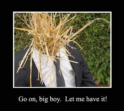 Don't attack the straw men: Straw man fallacies and reductio ad ...