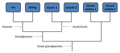 This is an example of a cladogram (aka phylogenetic tree) showing the relationships between you and your five relatives in my example.