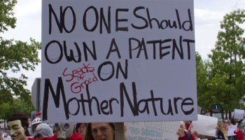Patenting Genes: Pros and Cons