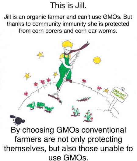 Bt GMOs benefit non GMO farmers conventional halo effect